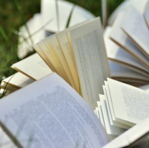 Bøger i græsset